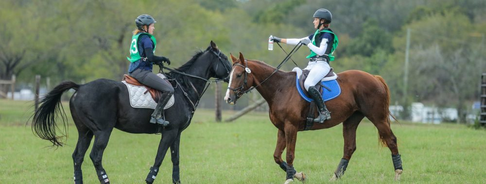 QRF Horse Trial Participants